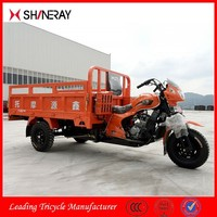 Made in China OEM Hot Sale New Product Flatbed 250Cc Motor Scooter Tricycle