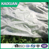 pp spunbond nonwoven fabric for agriculture and fruit bag