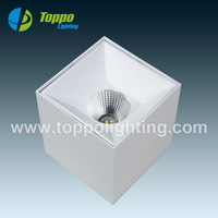 "Easy Surface Mounting Installation IP20 White Paint COB 4"" 6"" 20W 30W Square Downlight"