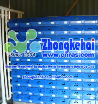 zhongkehai3-D indoor recirculating aquaculture mud crab breed