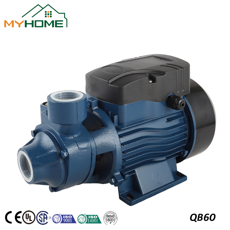 QB60 China 0.5HP 220V Small vortex water pump