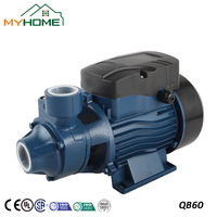 QB60 China Small vortex water pump 0.5HP 220V Hot sale