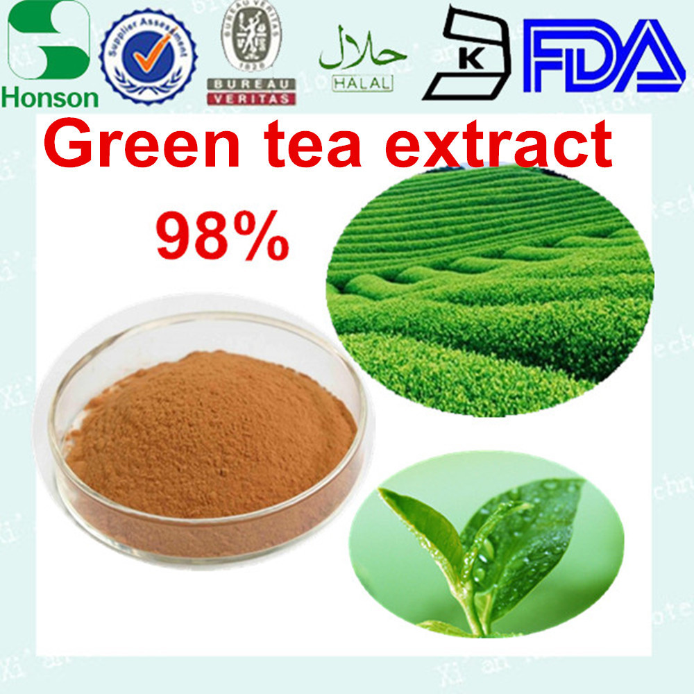 green tea extract 50% egcg tea 95% polyphenol for food additive and beverage by factory