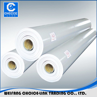 China PVC waterproof membrane/flexible clear plastic sheets