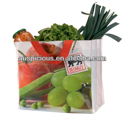 PP Woven Bag for vegetable and fruied pag