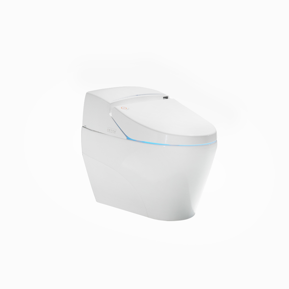 High Quality Assembled warm Dry intelligent Toilet