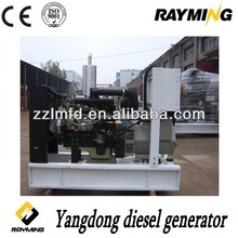 yangdong brand small dc generator, home electric supply generator