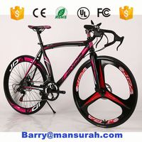 Chinese Fixed Gear Racing Bike Road Bicicleta bicycle