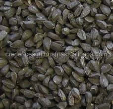 Premium Quality Fresh and Delicious Nigella Sativa Extract at Affordable Rate