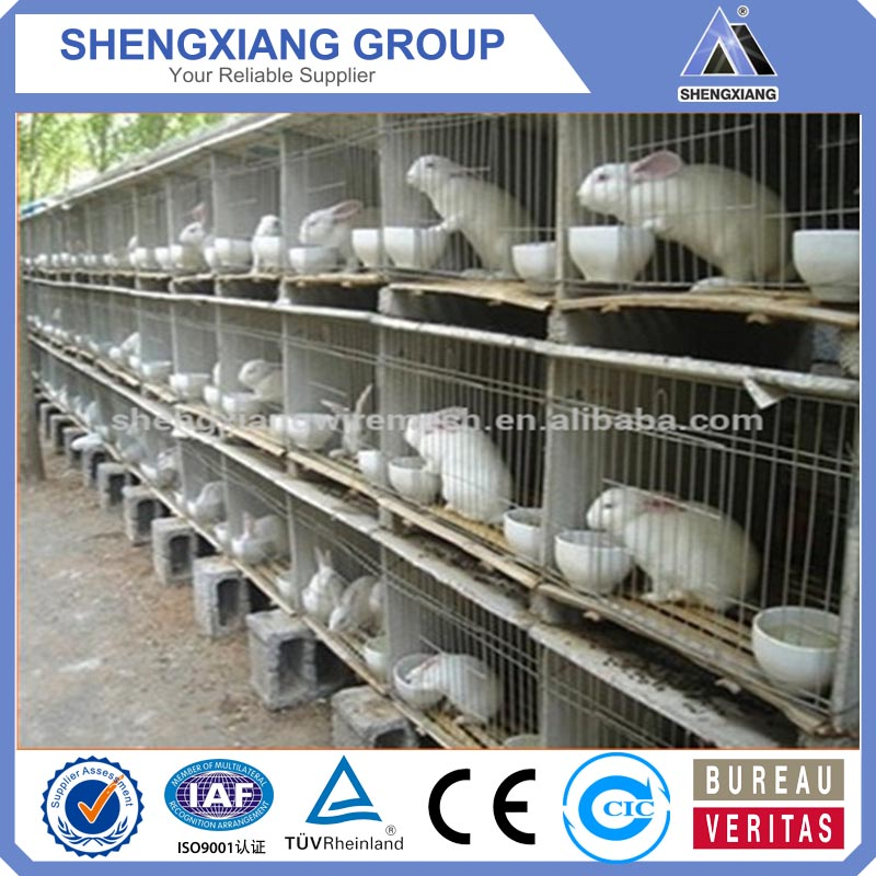 High quality cheap rabbit cage in kenya farm low price rabbit cage in kenya farm rabbit cage in kenya farm(CHINA SUPPLIER)