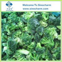 Halal Frozen Food IQF Frozen Broccoli Health Food