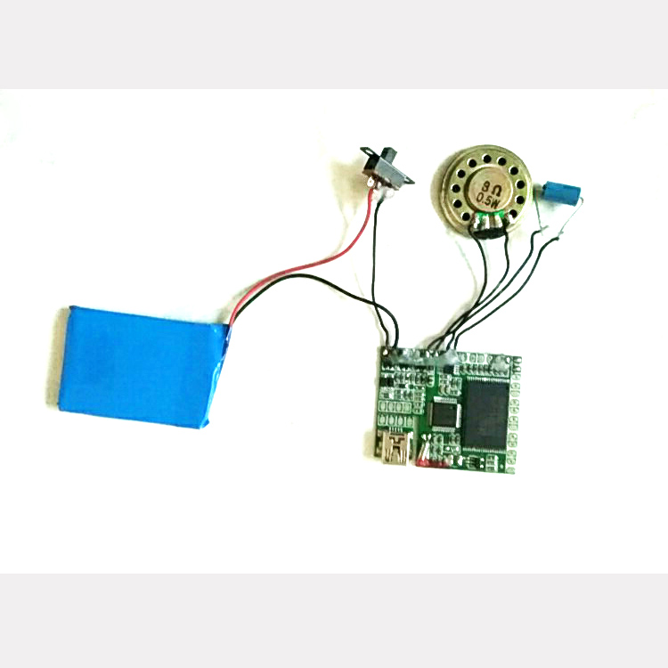 High quality customized MP3 LED sound module