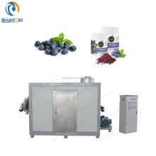 China good quality blueberry cryogenic pulverizer
