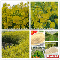 Huminrich Shenyang Amino Acid In Agriculture Fertilizer Aminal Source