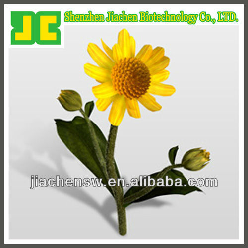 Natural Mountain Arnica/Tobacco Extract 32%