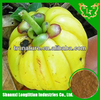 Easy Absorb ! 100% top quality organic garcinia cambogia extract powder with factory price and good service