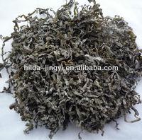 2016 crop China naturally dried cut laminaria