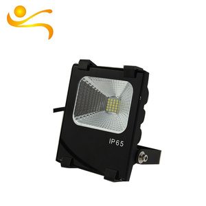 Durable Using Low Price Plastic Housing 10W Led Floodlight