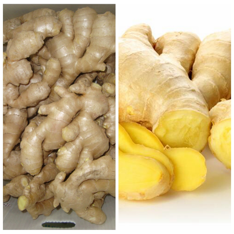 market prices for fresh ginger