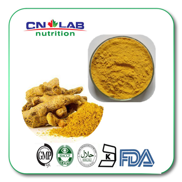 Top quality turmeric curcumin pharmaceutical grade