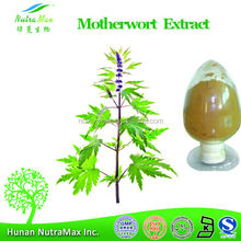 Made in China Motherwort Herb Extract/Pure Motherwort Herb Extract/Motherwort Herb Powder Manufacturer