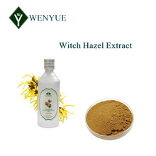 Favorable price Witch Hazel extract powder for Skin Care