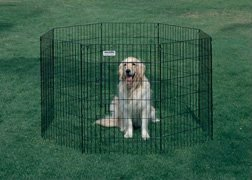 8panels metal wire dog play pen