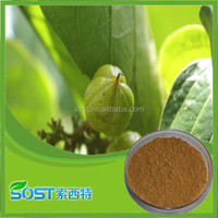 natural high quality guarana extract powder