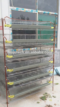 Alibaba pet cage 6 layer 400 quail layer cages design conforms with healthly reasonable for quail farming HJ-QCX400