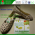 Moisture absorber shoes/garments use anti-mold stickers/chips