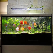 Timer and dimmer sunrise and sunset full spectrum crees 4ft asta 120r1 wifi control wireless led aquarium light