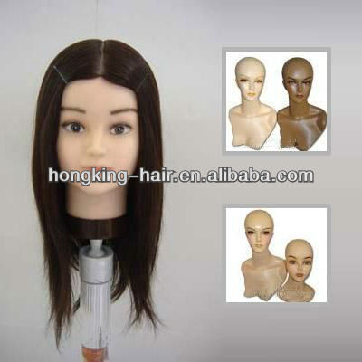 high quality Training mannequin head