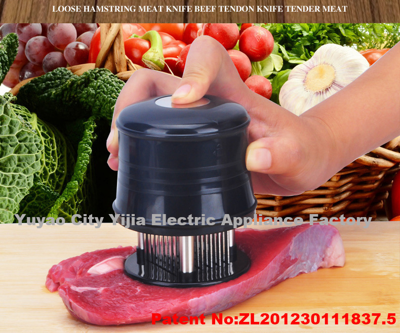 FDA Kitchen Meat Tenderizer for Steak,Chicken,Fish and Pork