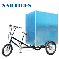 304 stainless steel spokes flatbed 3 wheel tricycle for cargo