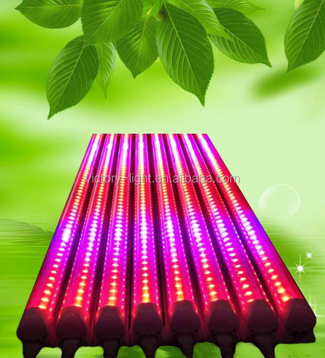 Red and Blue integrated 4ft 18W led grow tube light for greenhouse hydroponics