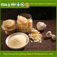 China supplier sales dried powder garlic best selling products in america