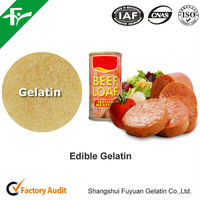 Hot Sale Health Edible Gelatin for Corned Beef Loaves