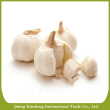 China best selling white garlic with cheap price