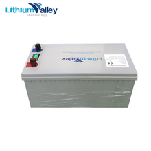 Rechargeable 12V 100Ah LiFePO4 Battery Pack for Energy Storage E-bike RV AGV EV Boat