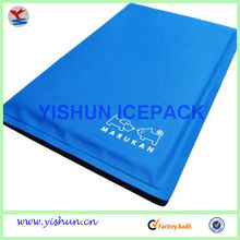 New Multifunctional cool gel mat for car