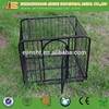 Factory Galvanized Comfortable Welded mesh dog kennel panels