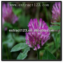 Pure Natural Red Clover Extract/Alfalfa Extract/Medicago Extract with high purity