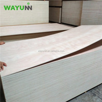 Plywood Industry 4x8 Poplar Plywood China