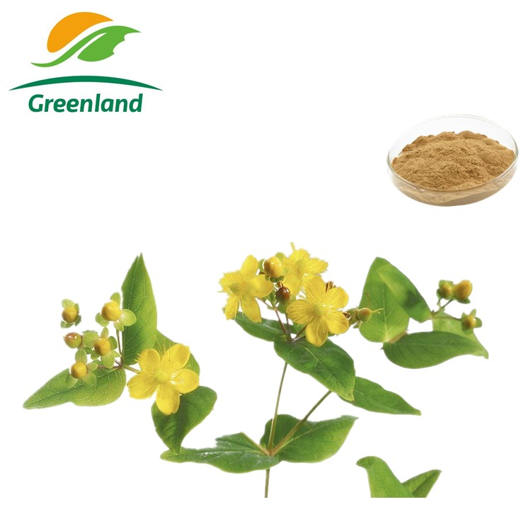 High Quality 100% Natural St.Johnwort Extract with 0.3% Hypericin & 98% Hyperforin