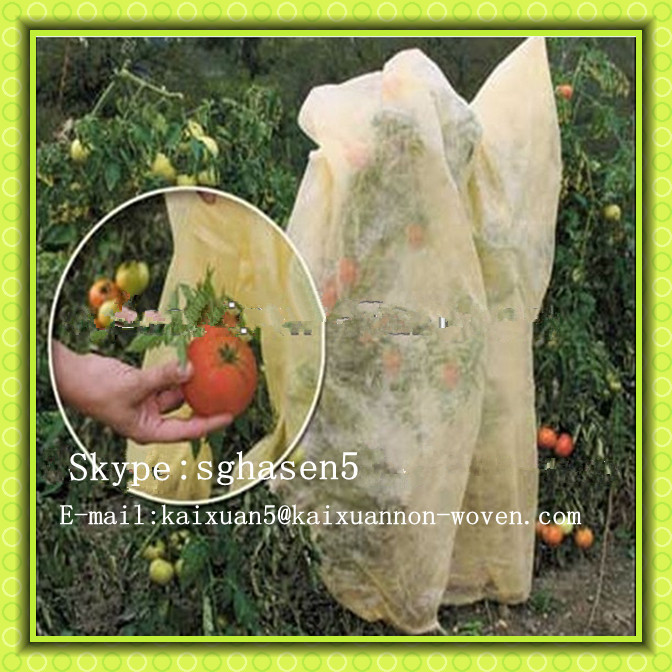 [FACTORY ] PP nonwoven Agriculture grow bag/fruit protection bag/banana bag-winter/frost