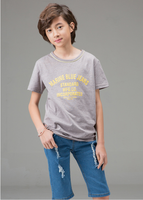 Wholesale Children Clothing Round Neck Printing T-Shirt for Fashion Boys