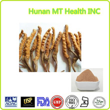 Hot sale best quality 30%Polysaccharides Cordyceps Extract/Cordyceps sinensis
