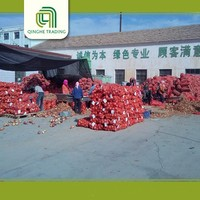 wholesale fresh shallot onion   onions 25kg bags  with low price