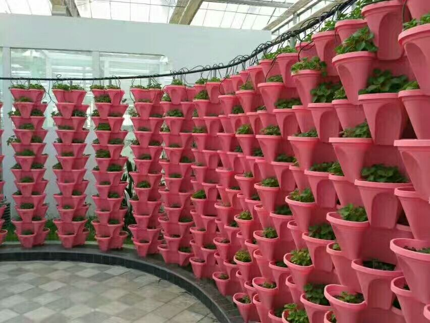 LANTAN Wholesale Greenhouse and Home use PP hydroponic vertical plastic flower pot