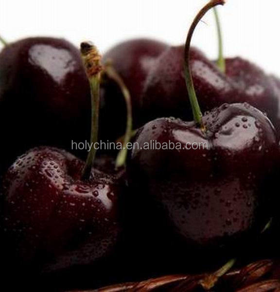 hot sale high quality cherry